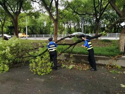 迎战超强台风 滨湖城管在行动